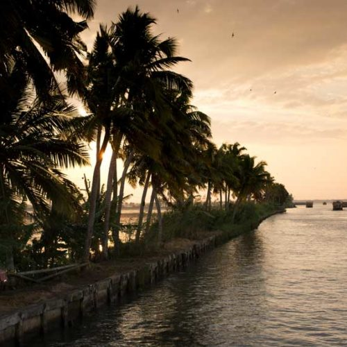 The Keralan Backwaters at dusk.
