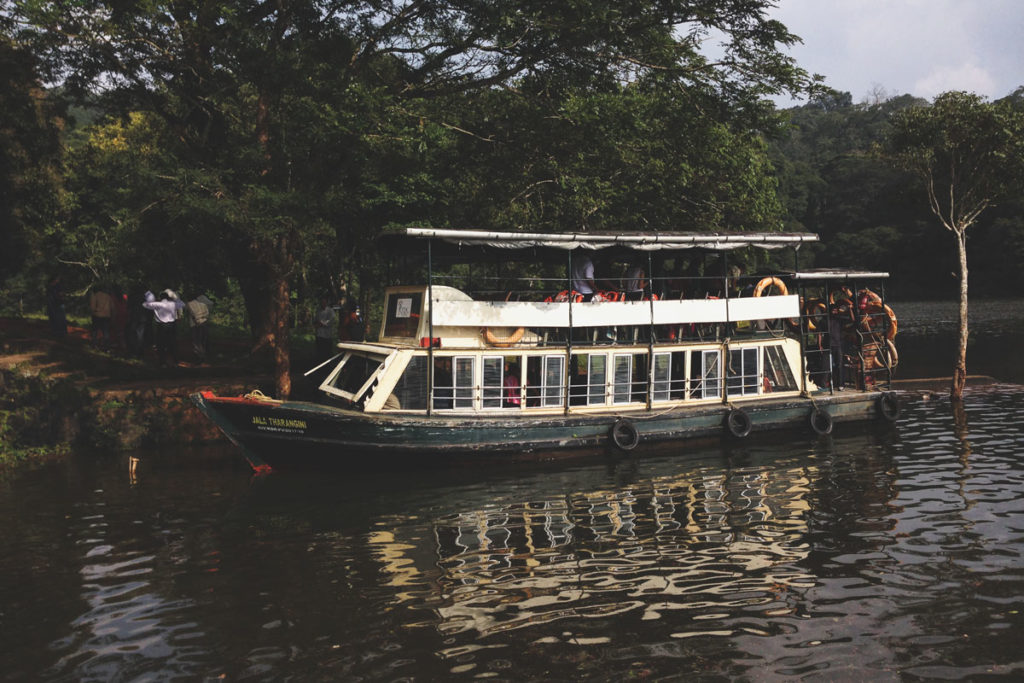 Boat cruise in the Periyar National Park and Tiger Reserve.